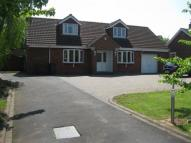 5 bed Detached Bungalow for sale in Lynton Littleworth Lane...