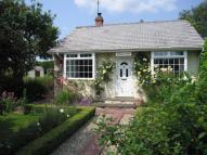 Detached Bungalow in Midgeley Dene...
