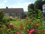 Semi-Detached Bungalow for sale in Evendene Road, Evesham...