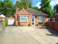 Detached Bungalow for sale in Bradbourne Avenue...