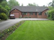 3 bed Detached Bungalow in Crewe Road, Wistaston...