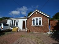 Detached Bungalow for sale in Princes Avenue, Chatham...