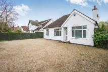 Detached Bungalow in Grove Road, Blaby...