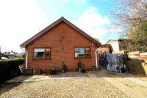 Detached Bungalow for sale in Ecclesfield Road...