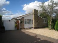Detached Bungalow for sale in Orchid Way, South Anston...