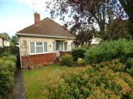 Bungalow to rent in Bushy Mead, Widley...