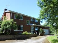 4 bed Detached house for sale in Church Lane, Hutton...