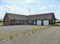 Detached Bungalow for sale in HEATH ROAD, Banham, NR16