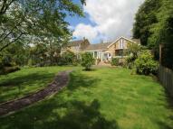 Bungalow for sale in Beechcroft Hexham Road...
