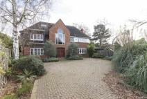 7 bed property for sale in Milnthorpe Road, Chiswick