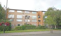 Flat to rent in South Ealing Road, Ealing