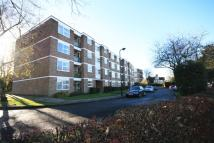 Clivedon Court Flat to rent