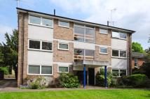 Flat for sale in Crescent Road...
