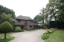 5 bedroom house to rent in Coombe Lane West, Coombe