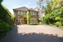 5 bed house in Albany Park Road...