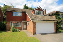 property to rent in Carrick Gate, Esher
