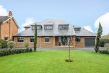 property for sale in The Avenue, Lower Sunbury