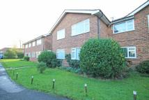 2 bed Flat in Percy Road, Hampton