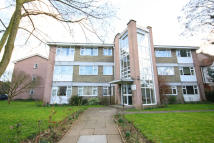 Flat to rent in Thornbury Road...