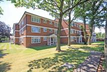 Witham Road Flat to rent