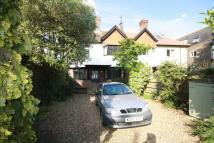Twickenham Road house to rent