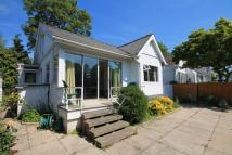 Sunbury Court Island Bungalow for sale
