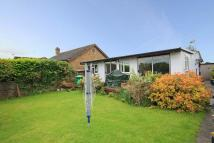 Bungalow for sale in Thames Meadow, Shepperton