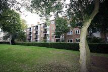 Flat to rent in Windlesham Grove...