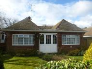 Detached Bungalow in Ocklynge Close...
