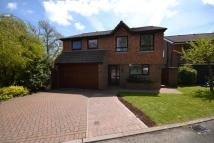 4 bed house to rent in Highwoods Avenue...