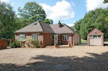 Bungalow in Hardwick Lane, Lyne...
