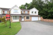 Detached property for sale in Wolveston Close...