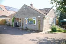 Detached Bungalow for sale in King Ina Road, Somerton