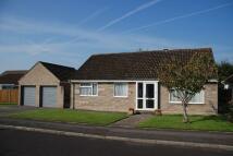 Detached Bungalow for sale in Sevenacres, Somerton