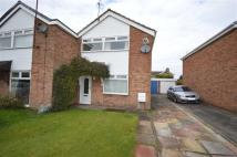 3 bedroom semi detached property to rent in Sandon Crescent...