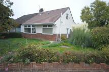 Bungalow to rent in Hadlow Road, Willaston...