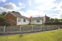 4 bed Detached Bungalow in Woodlands Close...