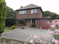 'Castle Royd' Detached house for sale