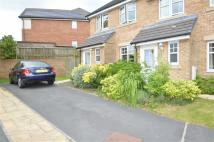 3 bed semi detached home to rent in Sedum Garden, Huncoat...