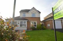 Detached house to rent in Pilkington Drive, Altham...