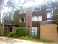 Chichester Road Flat to rent