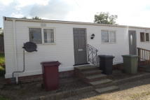 Bungalow to rent in Sunningdale Park, Tupton