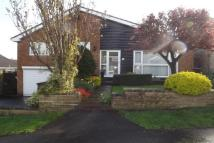 3 bedroom Detached Bungalow to rent in Selby Close, Walton...