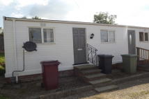 1 bedroom Bungalow to rent in Sunningdale Park, Tupton