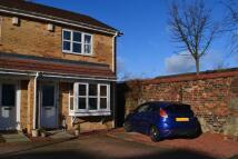 2 bedroom semi detached house for sale in ** CORNER PLOT ** Tree...