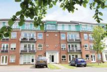 Flat for sale in 0/2, Strathblane Gardens...