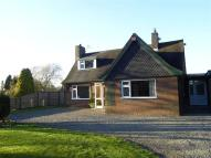 house to rent in Windy Mount, Woore