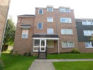 Flat to rent in Beauchamp Place, Cowley...