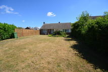 3 bedroom Detached Bungalow in Mill Lane, Braintree...