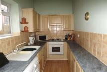 4 bed property to rent in Erskine Road, Westoe...